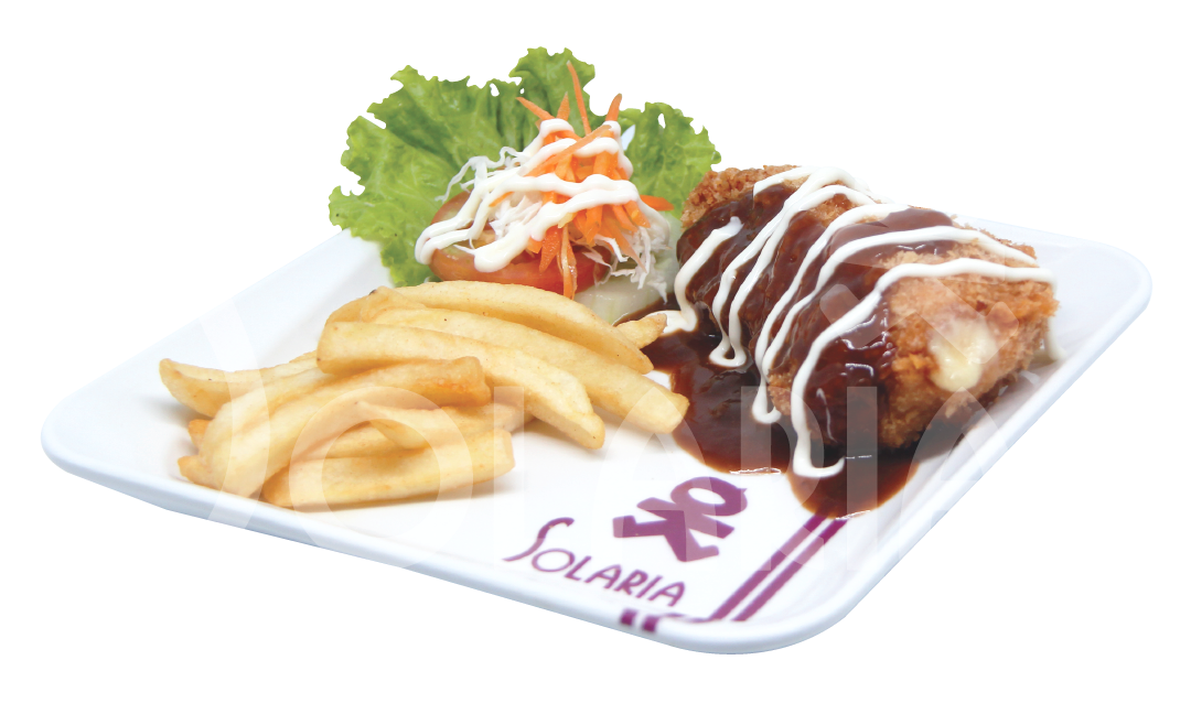 15. Chicken Mozarella French Fries Solaria